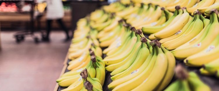 Bananas for Sober Living in Boston Massachusetts